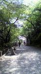 090527_maboroshi.jpg